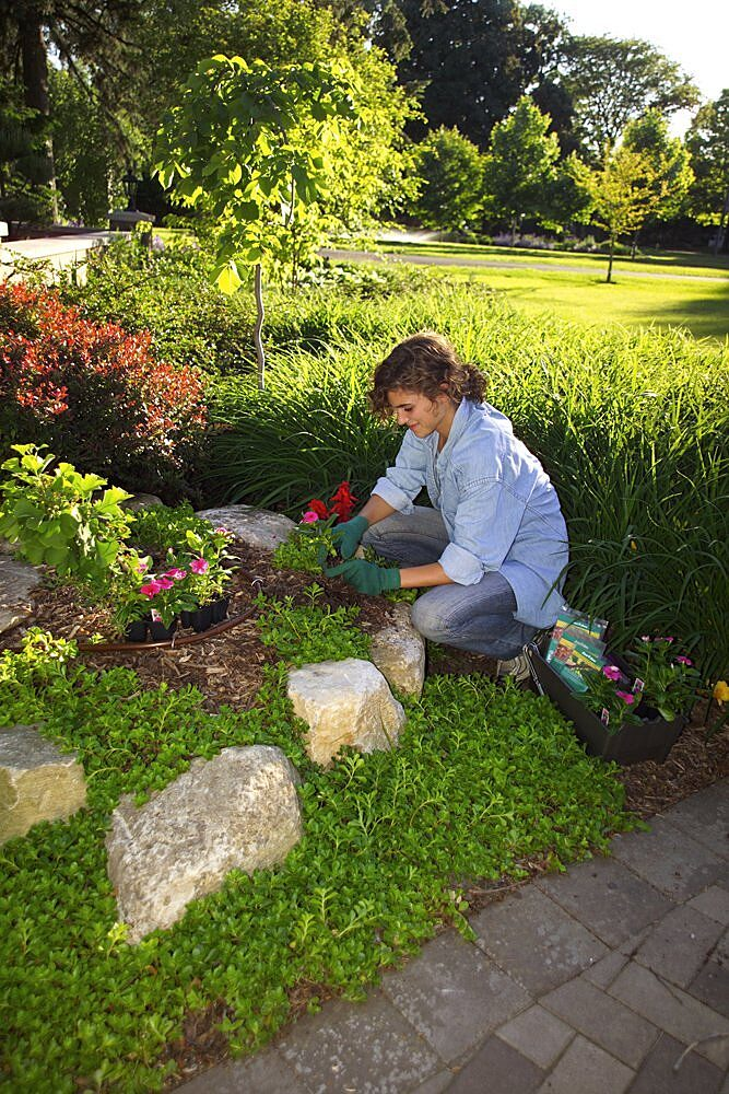 If You Know How To Take Care Of It Your Lawn And Garden Can Give Years Enjoyment For Surprisingly Little Effort