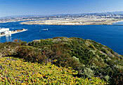 San-Diego-bay-picture
