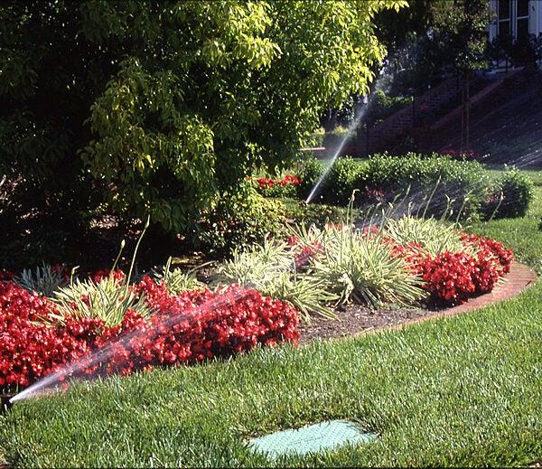 Benefits of Irrigation   Rain Bird