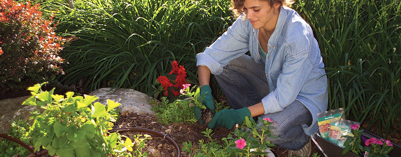 Woman planting flowers with drip irrigation